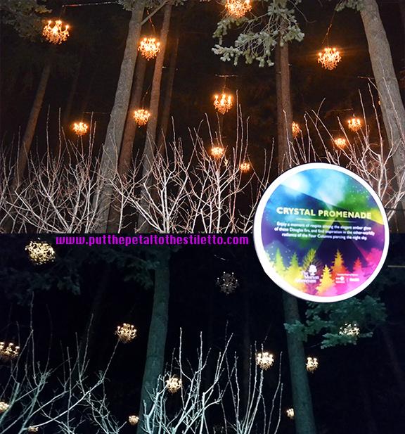 Moton Arboretum Illumination